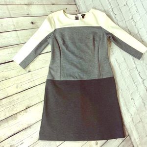 💫Petite Sz 4 Ann Taylor Color block dress🌟